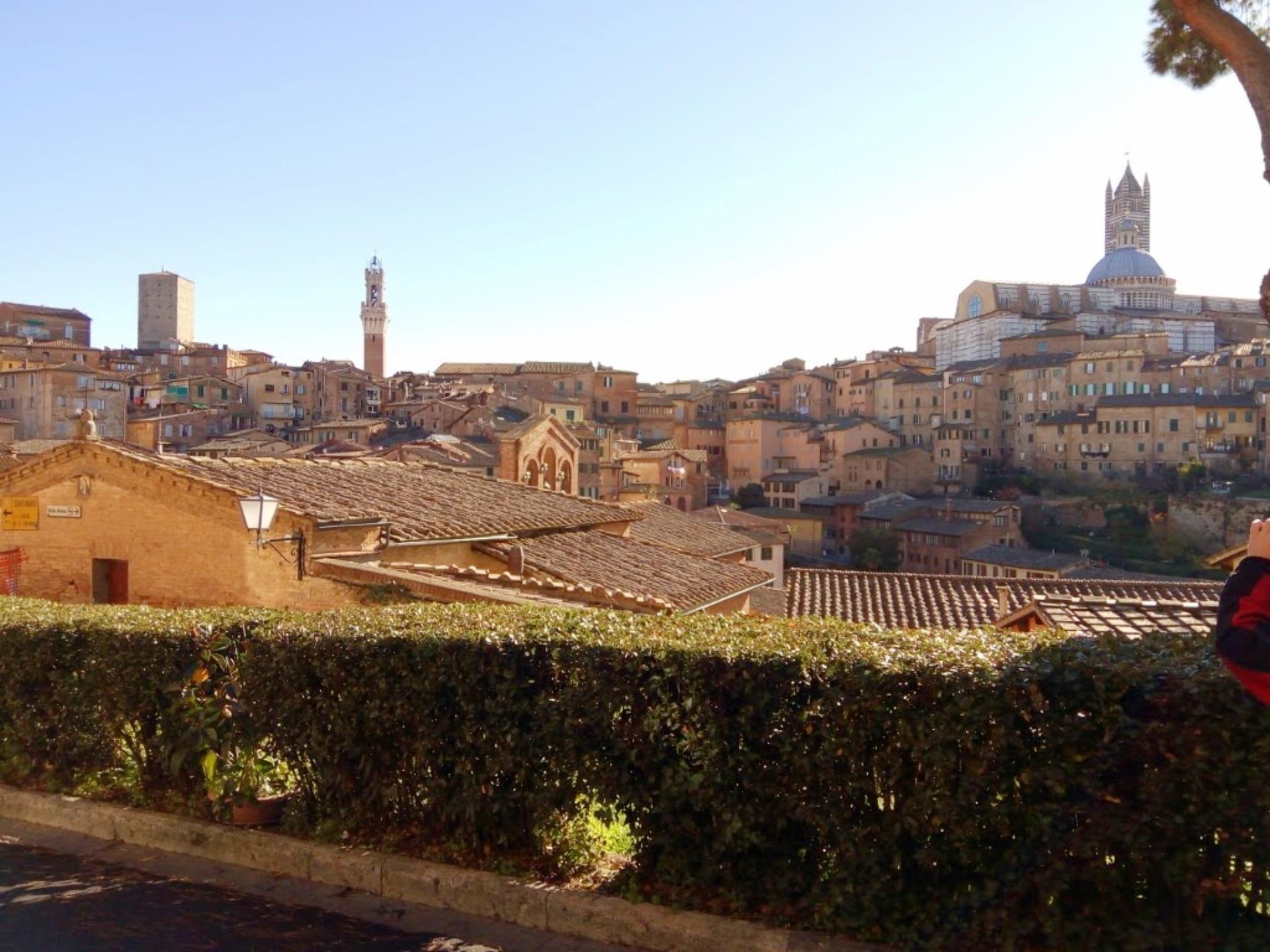 Vista de parte da cidade de Siena. Foto: Carolina Werneck/Gazeta do Povo