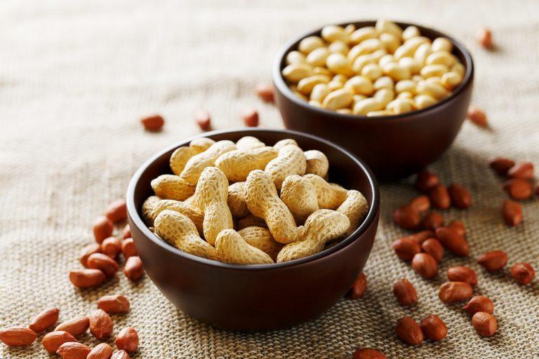 Para tirar os chamados fatores antinutricionais, os grãos devem ser deixados de molho por quatro horas. Depois disso, escorra e seque os amendoins no forno pré-aquecido. Foto: Bigstock.