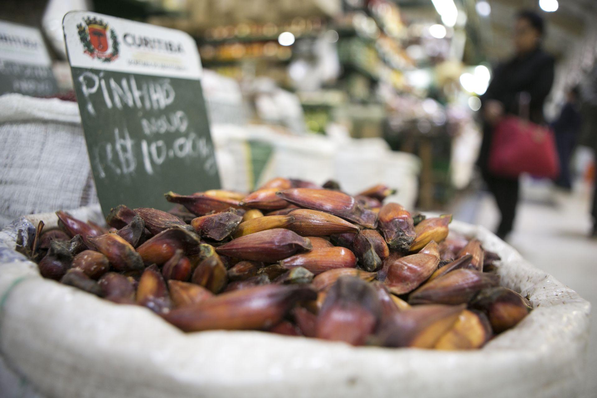 Pinhão: rico em fibras, quem come muito à noite pode ter efeitos indesejados (Foto: Marcelo Andrade / Gazeta do Povo)