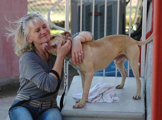 A professora e escritora Laura Hobgood-Oster e o cão Tiny.