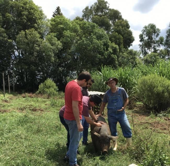 Olha o pessoal do Comitê Executivo do Gastronomia Paraná agradando um dos porcos do Cláudio Oliver