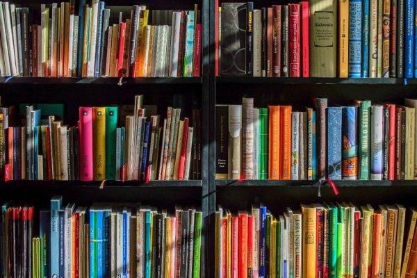 """Agora querem banir livros: conservadores no RS pedem retirada de """"obras de mau gosto"""" de bibliotecas"""
