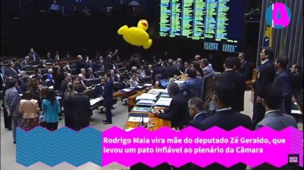 Rodrigo Maia chama segurança para tirar pato inflável do plenário – VÍDEO