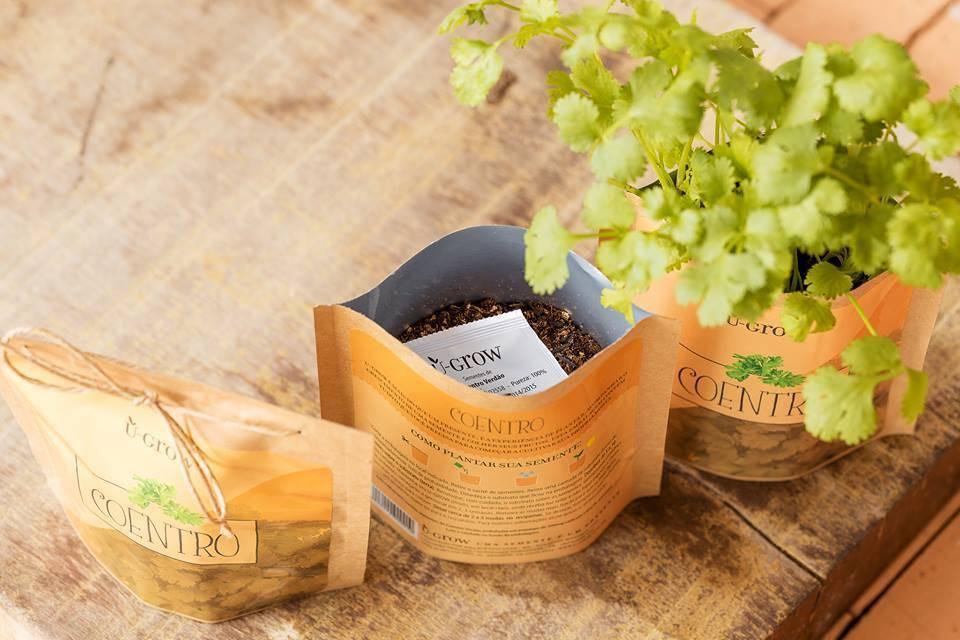 A U-Grow vende kits para plantar ervas como manjericão e coentro dentro de embalagens de papel resistente e com fecho ziplock. Foto: Divulgação