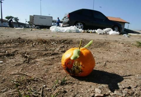 O desperdício de alimentos é o maior desafio da década