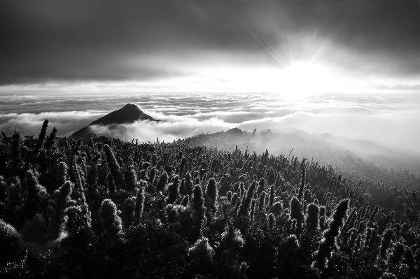 Pico Caratuba/Lucas Pontes