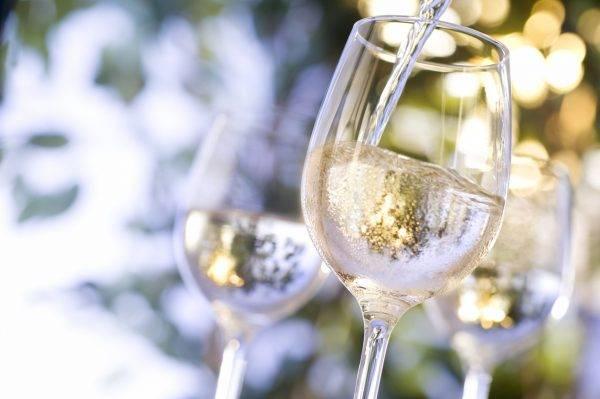 Tudo sobre os vinhos