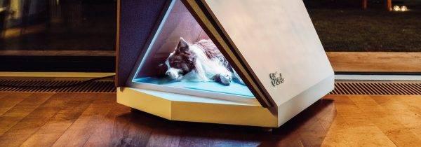 Ford cria casinha de cachorro que cancela os ruídos de fogos de artifício