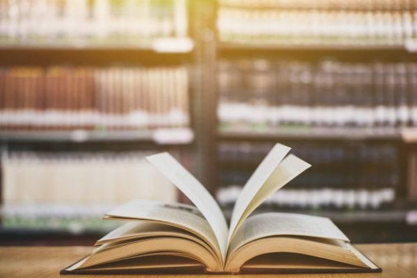 A Teoria da Barsa e o futuro da Educação