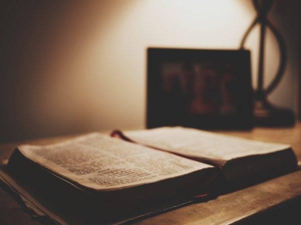 A Bíblia constrói selvagens e suas instituições