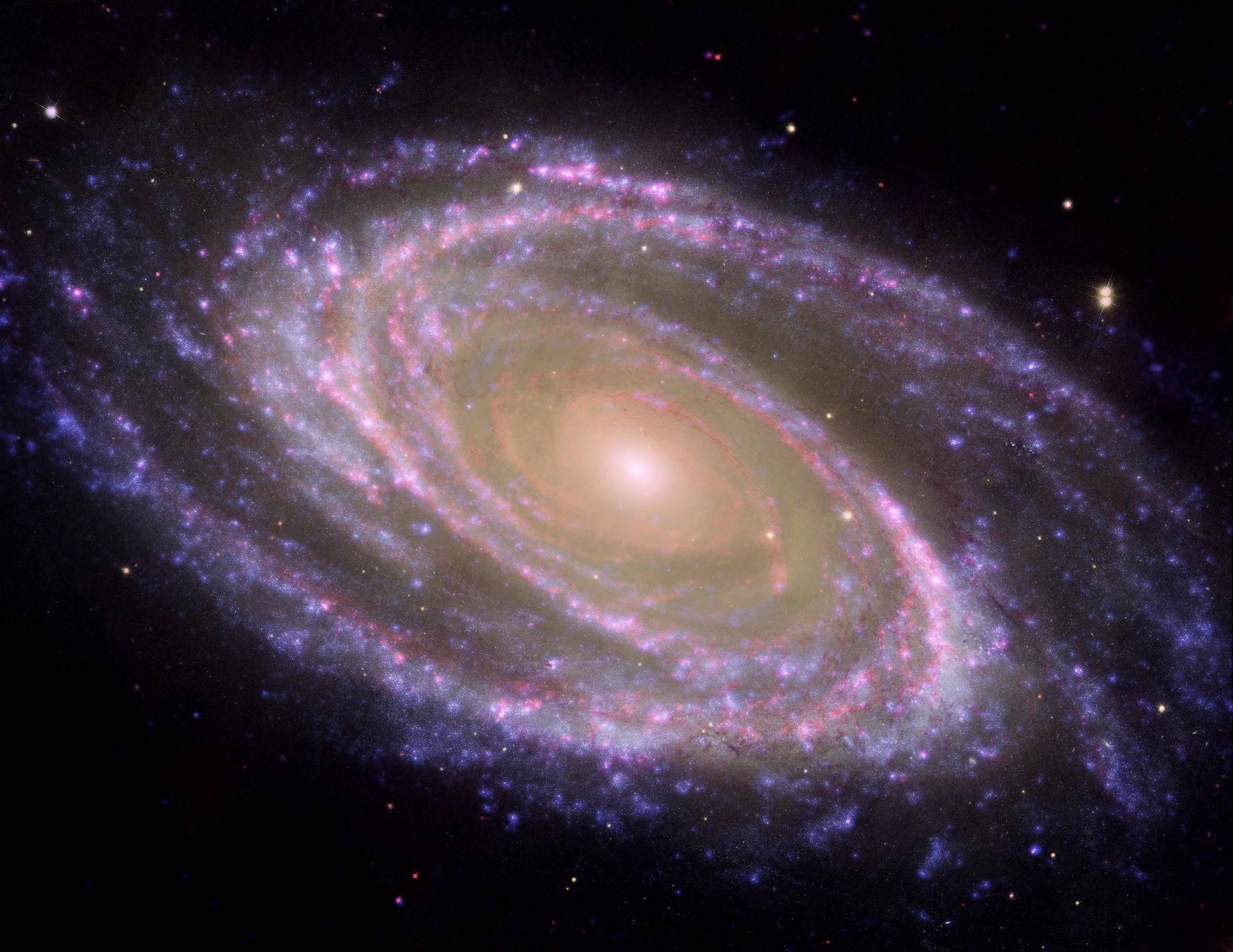 Galáxia espiral Messier 81, ou M81