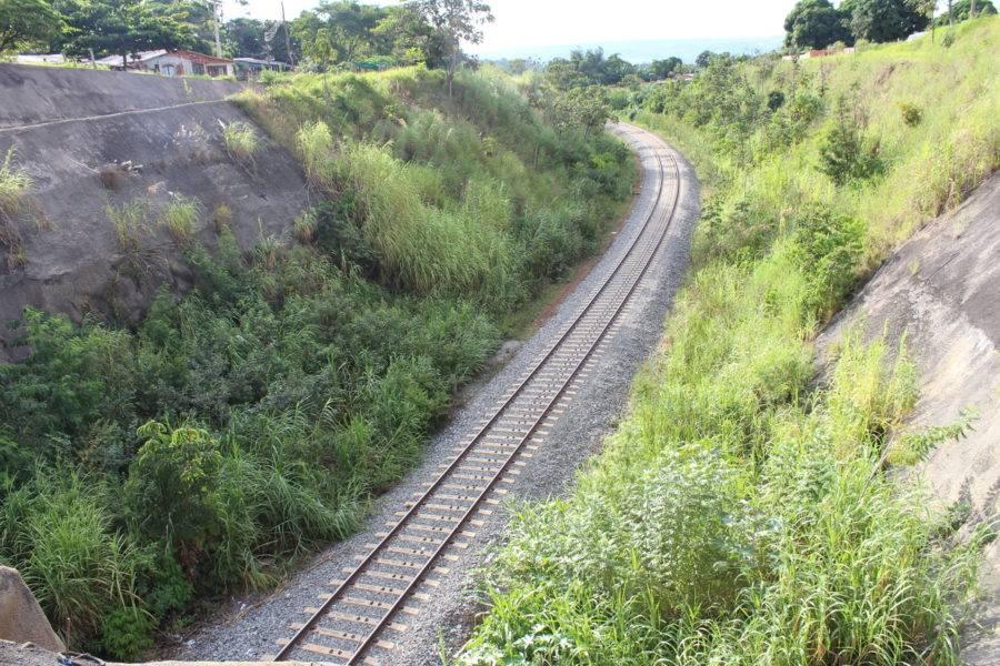 Mato toma conta de trecho da Ferrovia Norte-Sul em Anápolis (GO). Foto: Lúcio Vaz