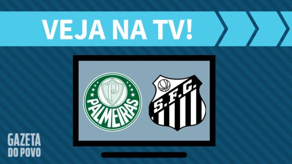 Palmeiras x Santos: veja na tv