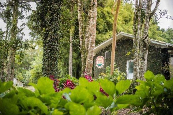 O belo espaço da Salumeria Monte Bello recebe mais um almoço de raiz neste fim de semana.