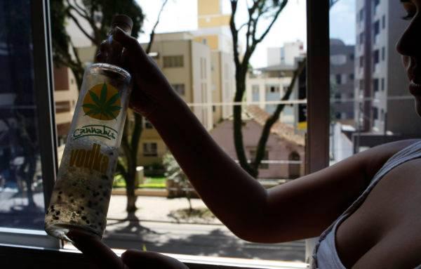 Alexandre Garcia discute se importar semente de maconha pela internet é crime. Sementes de maconha importadas pela internet são utilizadas até mesmo em vodkas compradas na Europa.  Foto: Antonio Costa / Gazeta do Povo